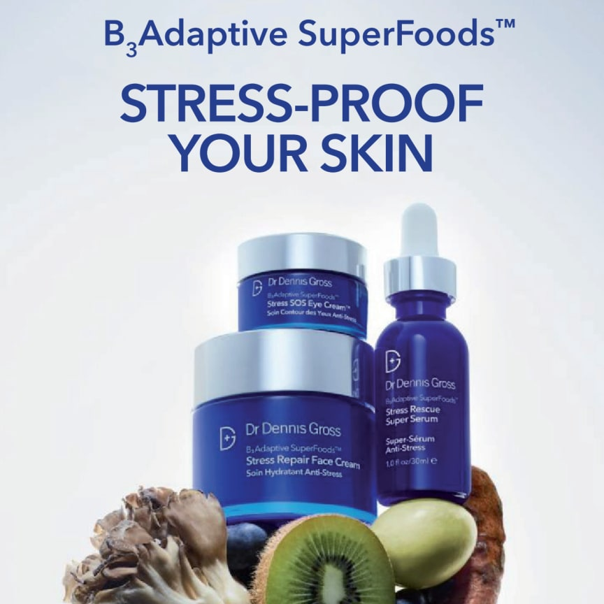 Dr Dennis Gross Skincare B3 Adaptive SuperFoods™ presentation