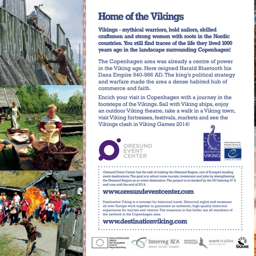 The Viking Games 2014