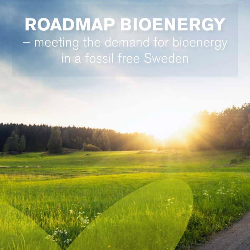 Roadmap Bioenergy – Meeting the demand for bioenergy in a fossil free Sweden