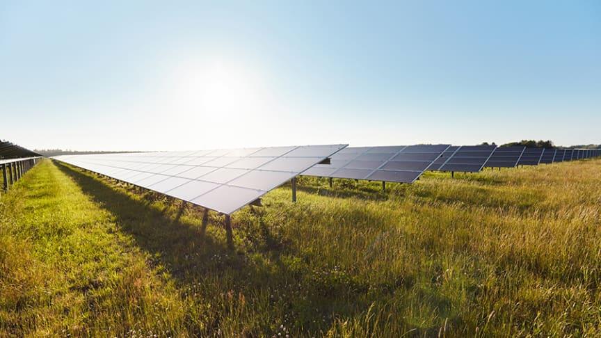 Chr. Hansen Danmarks årlige energibehov svarer til forbruget hos næsten 15.000 danske husstande, som fremover skal dækkes af vedvarende energi.