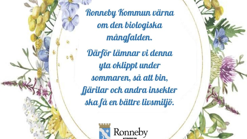 Under sommaren 2020 ställer Ronneby kommunen om skötsel av vissa gräsmattor till oklippta ytor. Detta ska gynna den biologiska mångfalden.