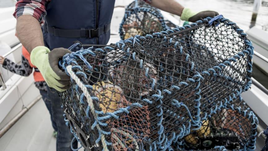 1000-tals fritidsfiskare förbereder sig under helgen inför måndagens premiär.