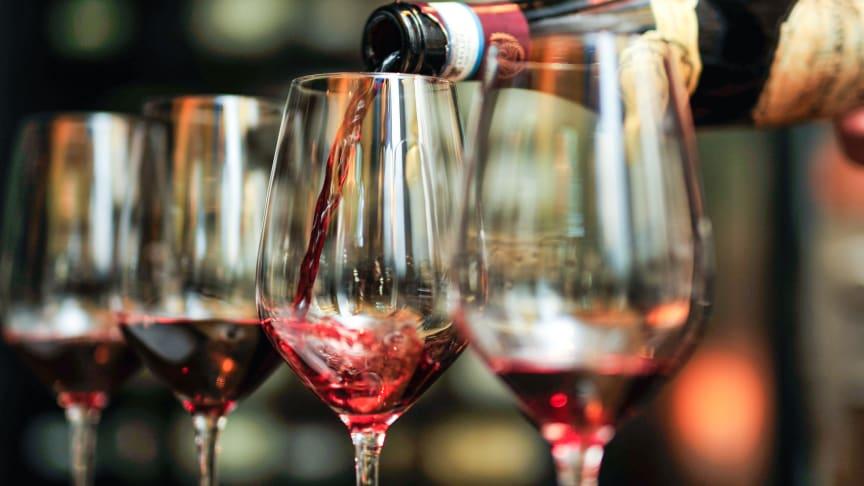 Én flaske Tommasi Amarone inneholder mer enn 20 kg druer. Foto: Haakon Hoseth