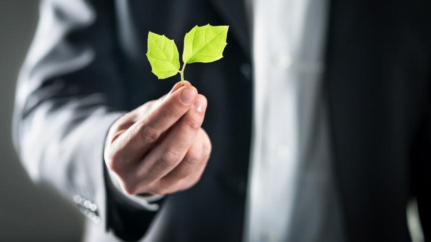 Byggmaterialhandlarna har tagit fram ett Position Paper för hållbarhetsfrågor.