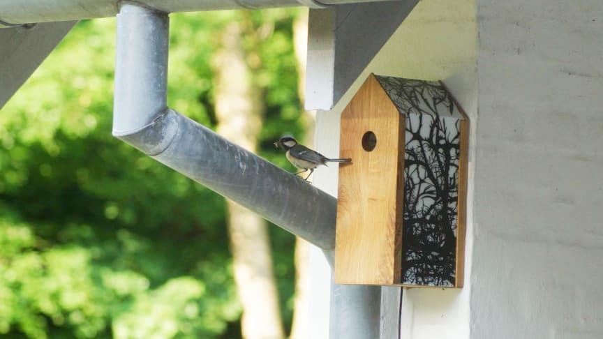 Fågelholken bör hängas upp i närheten av hemmet för att få WiFi-täckning