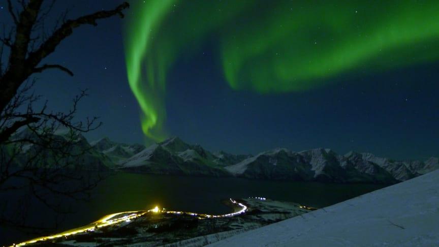 Visit Lyngenfjord ønsker flere medlemmer fra det lokale næringslivet. Foto:  Georg Sichelschmidt