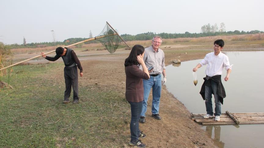 Miljögifter i fokus i nytt svensk-kinesiskt forskningssamarbete