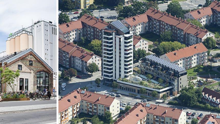 Stadsbyggnadspriset går till Malmö Saluhall och Greenhouse i Augustenborg belönas med miljöbyggpriset Gröna Lansen. Foto: Bojana Lukac, Leif Gustavsson