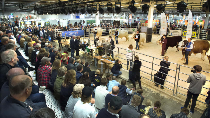 A well-received new concept plus satisfied exhibitors at Elmia Agriculture 2016