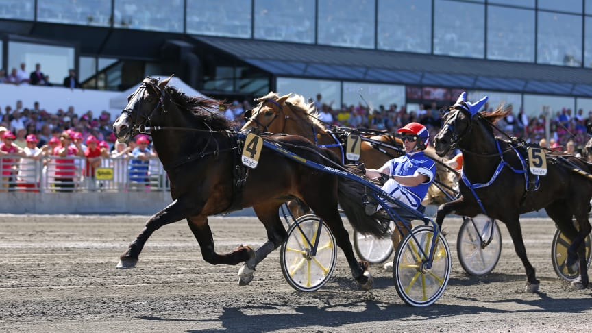Lome Brage vann Elitkampen 2018. Foto: Maria Holmén/TR Bild.