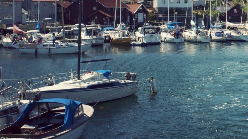 Två miljoner till projekt mot giftiga båtfärger