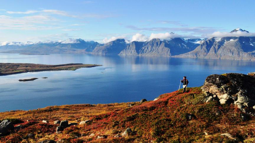 Lyngenfjorden, Foto: Georg Sichelschmidt
