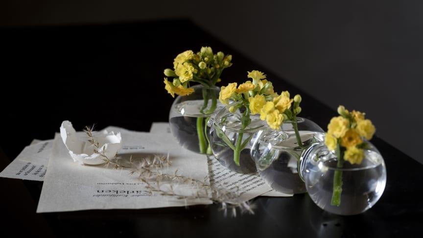 Gult är en färg som inte bara återfinns på kläder och inredning utan också på växter. Foto: Emilia Ahlgren