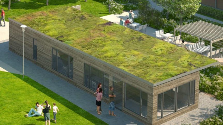 Gröna tak har många positiva effekter på miljön! (Bilden är en illustration)