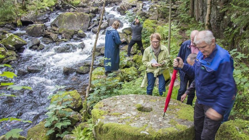 Vattenvandring längs Mölndalsån med Mölndalsåns vattenråd. Foto: Peter Nolbrant