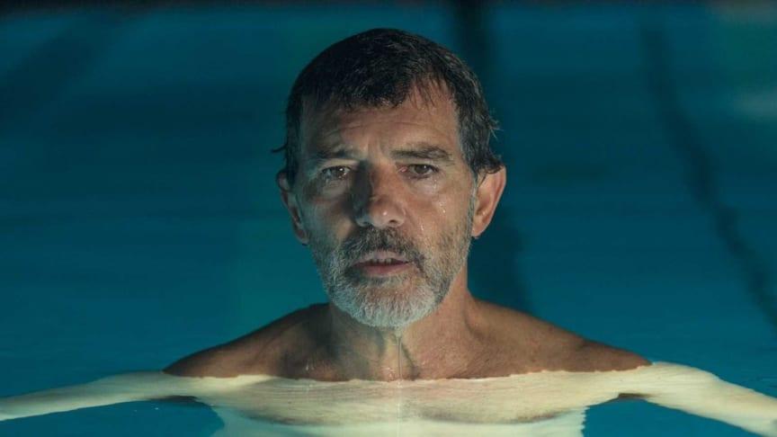 Antonio Banderas belönad i Cannes för Pedro Almodóvars nya film