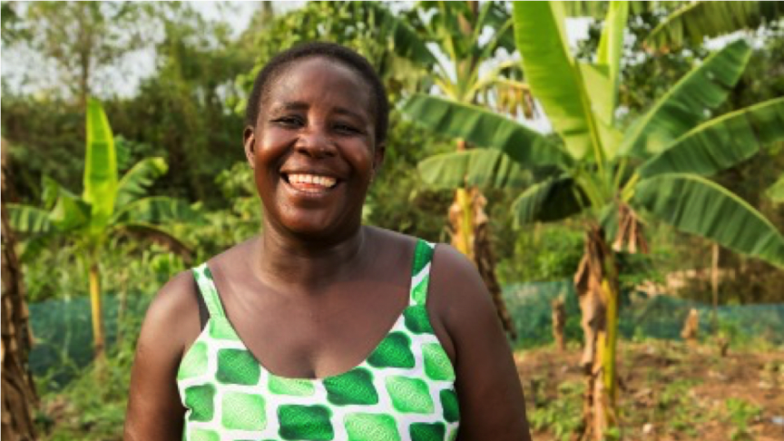 COCOA LIFE IN GHANA:  Helping female farmers thrive in business The story of Juliana (Suhum region)