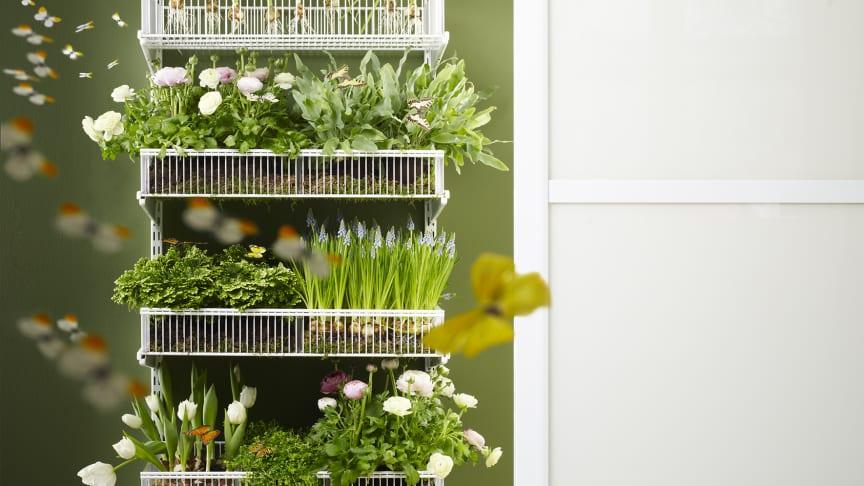 Elfa_Odla ditt trädgårdsintresse istället för att slösa tid på att leta efter förlagda sekatörer, fröpåsar eller krukor.