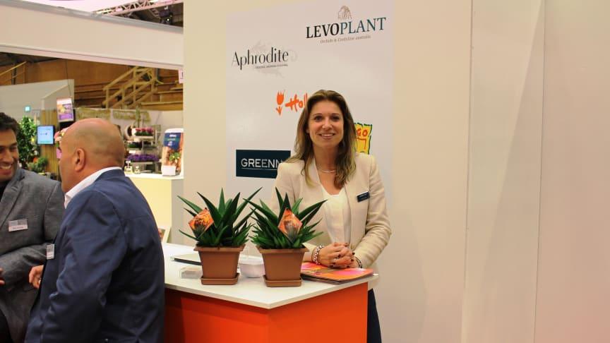 Dutch exhibitors test the Swedish market