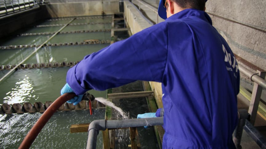 NIVA har hatt flere prosjekter der avløpsvannsanalyse inngår. Her fra et tidligere prosjekt på Norges største renseanlegg, VEAS. (Foto: Max Lotternes, NIVA).