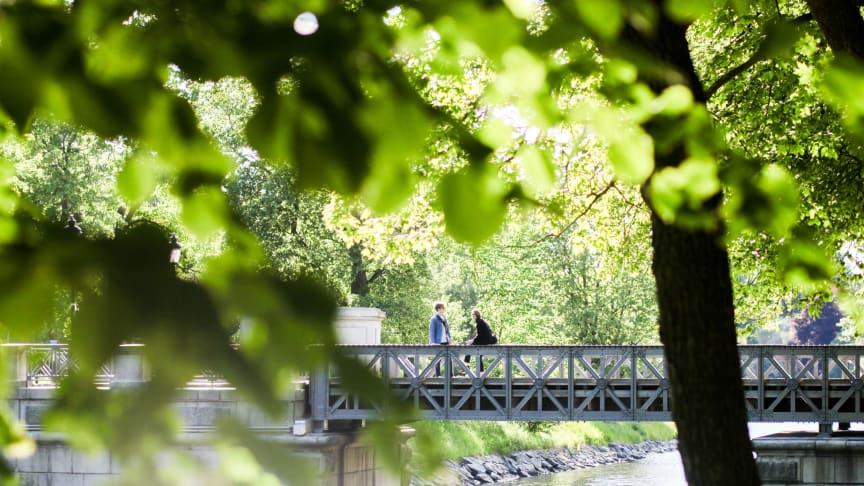 Foto: Tove Freij/mediabank.visitstockholm.com