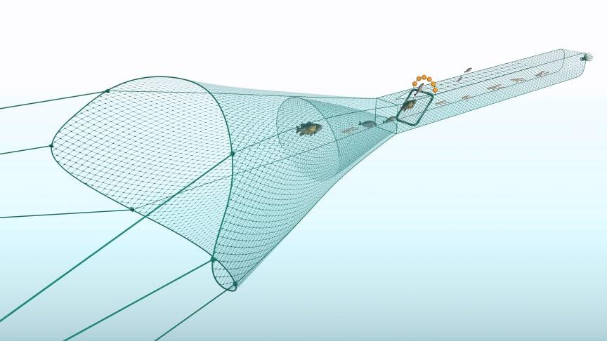 Kräfttrålen är utrustad med ett sorteringsgaller och en öppning ovanför gallret där fisken kan simma ut. Kräftan går igenom sorteringsgallret till fångstpåsen. Den småfisk som kommer igenom sorteringsgallret kan selekteras/sorteras.