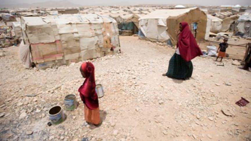 Varningssignalerna fanns men ingen lyssnade - lärdomar från hungerkatastrofen på Afrikas horn
