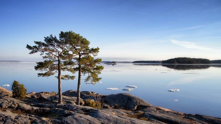 Polonite Nordic AB - Nytt gemensamt bolag tar över ansvaret för Polonite®-verksamheten i Sverige och internationellt
