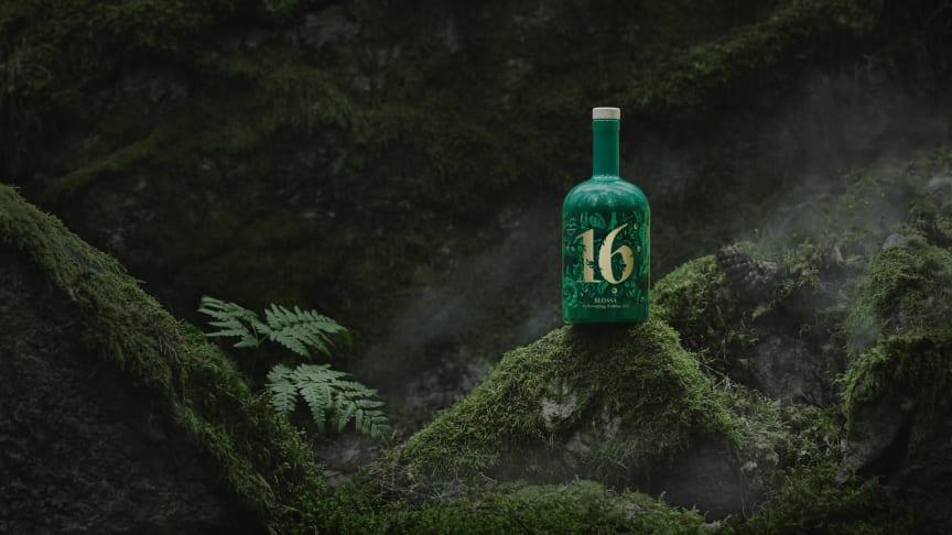 Blossa 16 på håll i skogen.