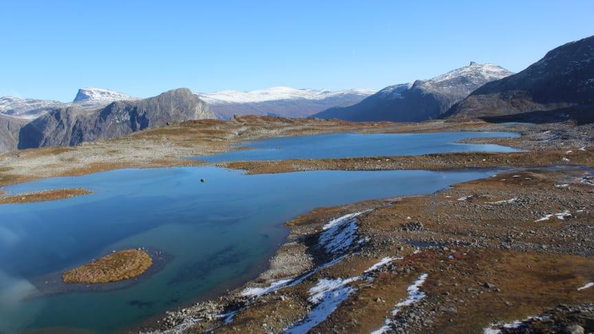 1000 statistisk utvalde innsjøar skal undersøkast denne hausten for å oppdatere oversikta over miljøtilstanden (Foto: Liv Lang-Ree, NIVA).