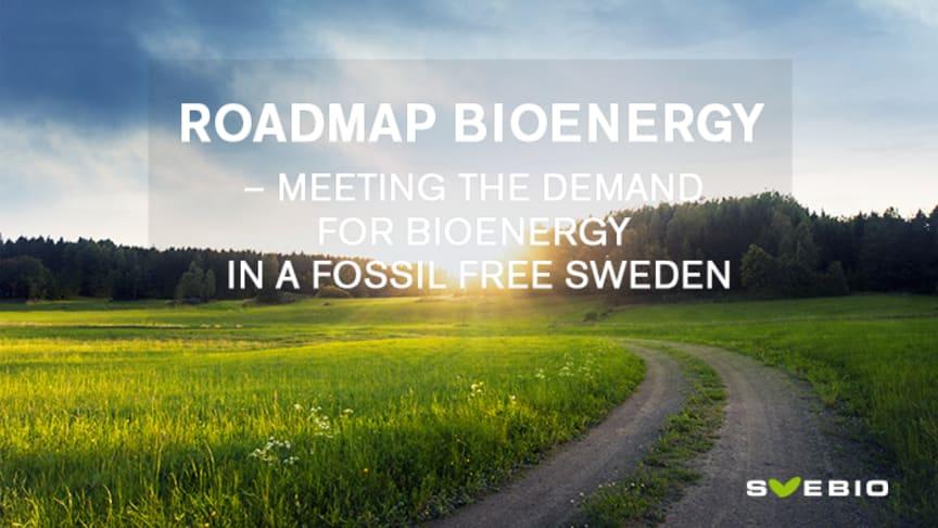 Roadmap Bioenergy identifies large Swedish potential