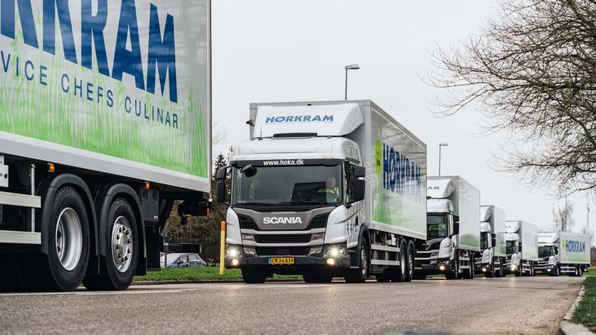 Det er et imponerende syn når Hørkrams 6 hybridbiler kommer kørende