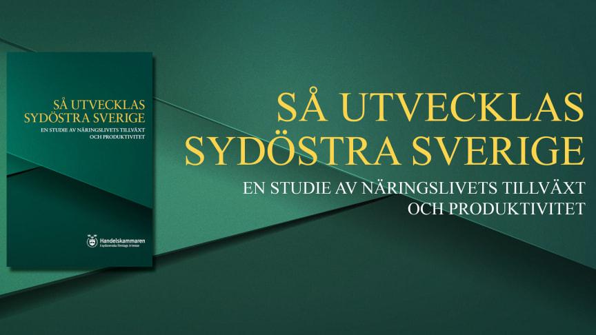 Ny rapport - Största analysen av näringslivet i Sydost någonsin
