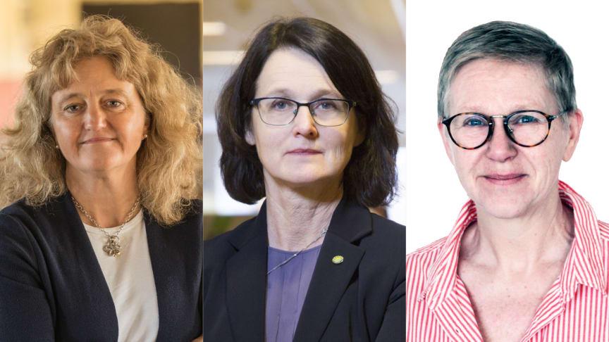 Anita Falkenek vd på KRAV, Britt Rahm vd Sigill Kvalitetssystem och Helena Ring-Johansson ordförande Biodlingsföretagarna.