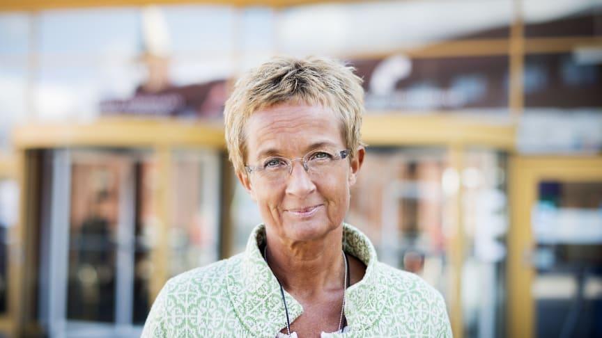 Kristina Säfsten, Jönköping University
