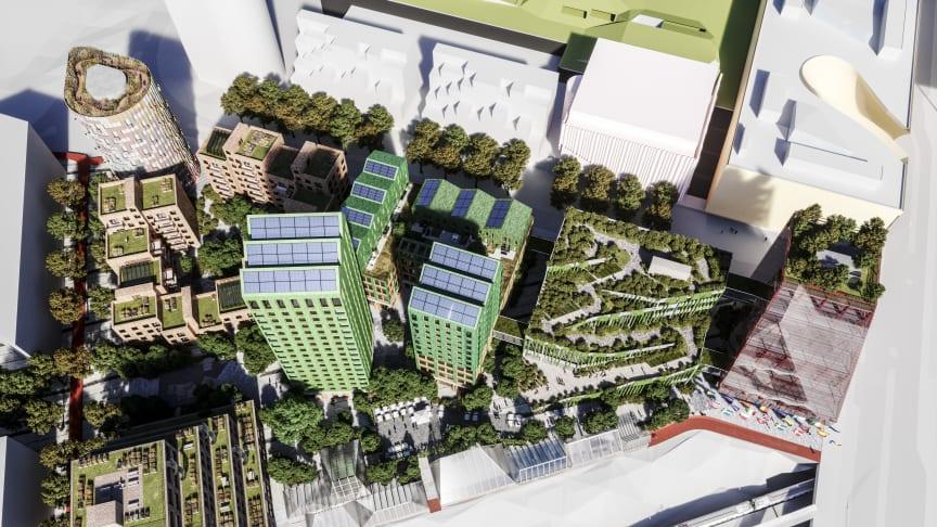 The Embassy of Sharing ovanifrån. Sju olika kvarter med olika karaktär.  Illustration: Wingårdh arkitektkontor