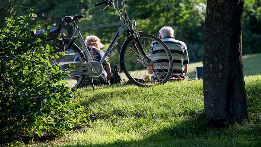 Forskare: Andra länder kan lära av Sverige vid social distansering