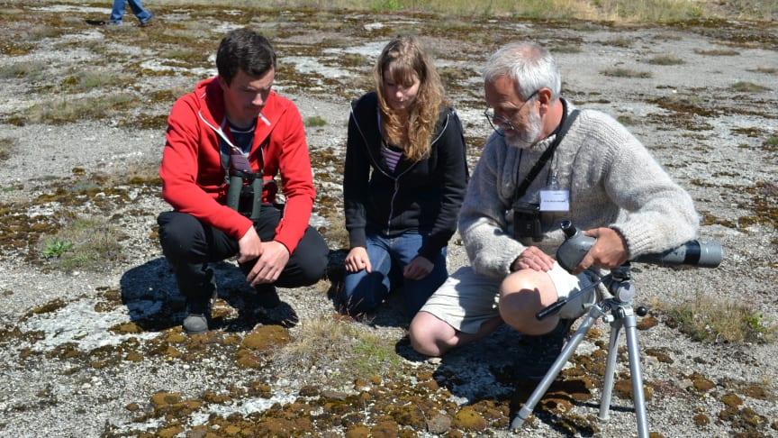 Cementa och Jehander bjuder in unga forskare till arbete kring biologisk mångfald