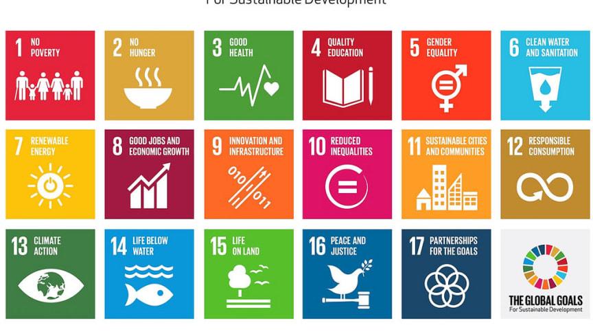 Virksomheder i Østjylland tager hånd om FN's Verdensmål