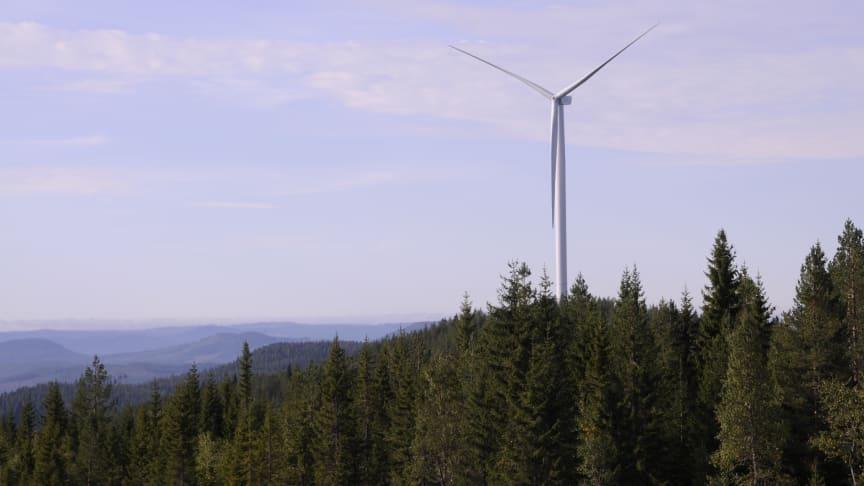Polarbröd nu helt självförsörjande på förnybar el
