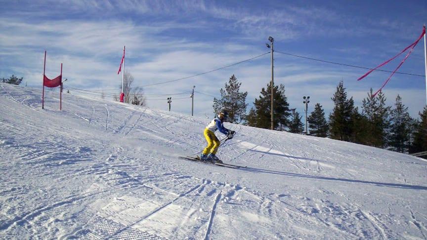 Lindbäcksstadions alpina anläggning