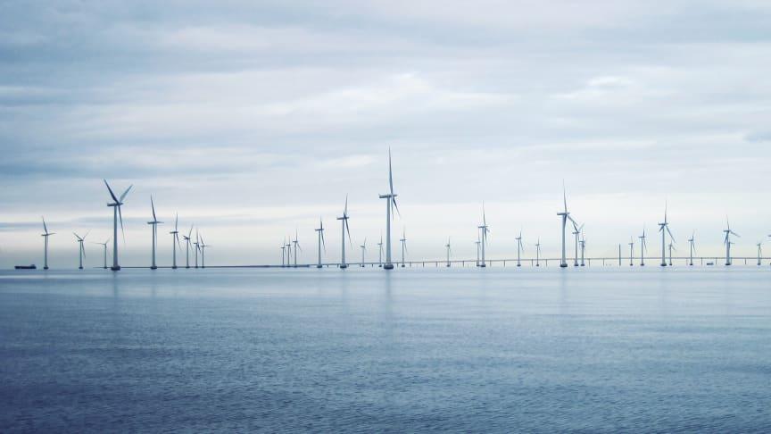 I dag lämnar Havs- och vattenmyndigheten förslag till havsplaner till regeringen. Det är första gången Sverige gör statliga havsplaner. Havsplaner är till för att havet ska användas hållbart, nu och i framtiden