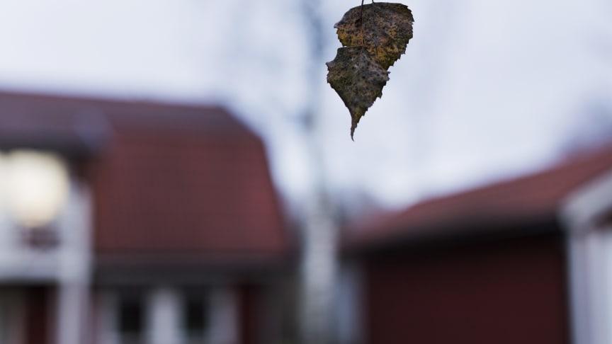 Foto: UNICEF/Melker Dahlstrand