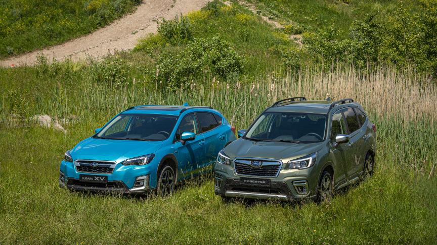 Subaru har Sveriges mest nöjda bilägare