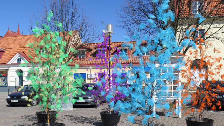 De traditionsenliga påskträden på Stortorget i Sölvesborg med dekorationer i tyll, för högupplösta pressbilder se länk nedan.