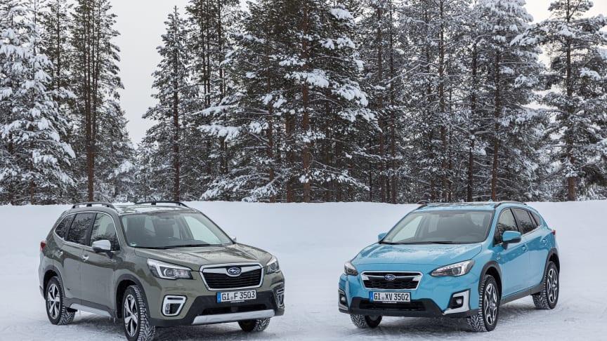 Världens säkraste bilar heter Subaru