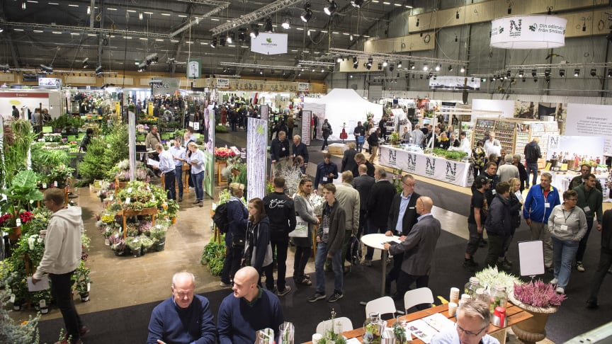 New product releases and the retail trade were in focus at this year's Elmia Garden.