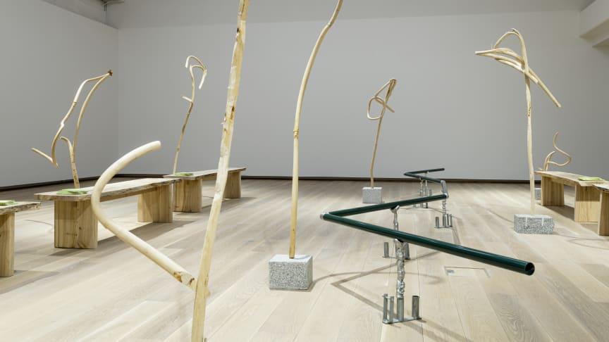 """Vårens stora utställning på Accelerator är Johanna Gustafsson Fürsts """"Ympa orden, piska min tunga"""". Nu kan du boka en digital visning."""