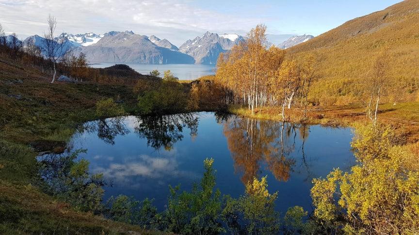 Utsikt fra Nordmannvikdalen - © John Johansen