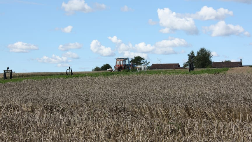 Så klarar det svenska jordbruket klimatmålen – samarbetsprojekt mellan KSLA och IVA